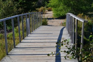 Photo of wooden bridge