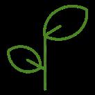 leafs